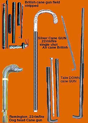 Cane Gun Collection