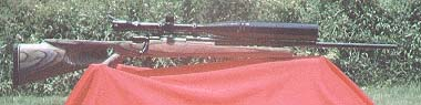 Custom Mauser 98 .308 on modified Fagen w/24X Tasco. Named
