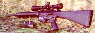Stoner SR-25 7.62x51 NATO