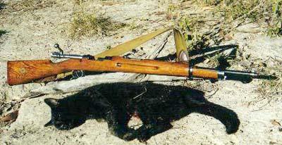 Mauser M38 (Swedish) 6.5 x 55