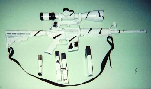 Bushmaster AR-15 W/Arctic Cammo & AMT 18X