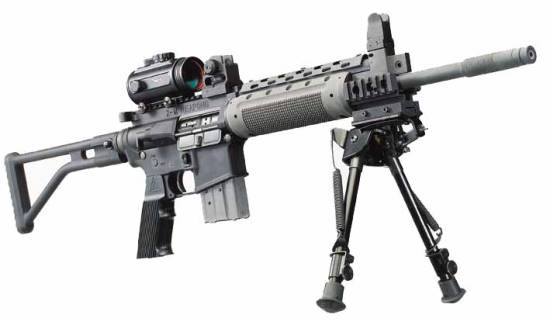 ZM Weapons Model LR300