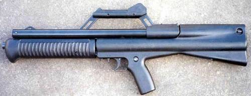Neostead 12ga pump shotgun.