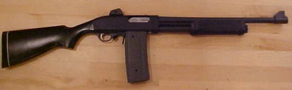 EEA PM2 shotgun with 7 round detachable mag