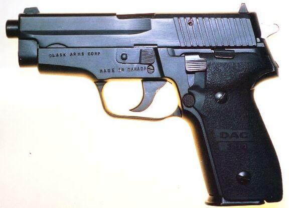 Dlask Model 394, a Canadian-made SIG-Sauer P228 clone