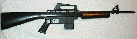 Armscore 22 cal AR-15 type.