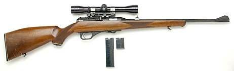 HK 300 .22 Mag