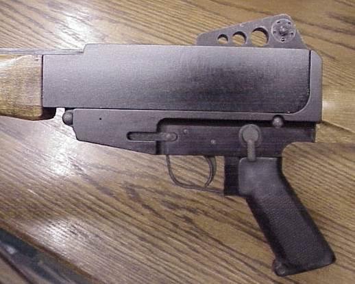 Bushmaster/Gwinn AR Rifle