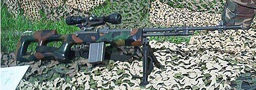 M14-L1 (M14 modified for the Lithuania Army)