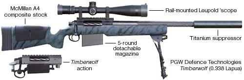 PGWDTI MRSWS Weapon System
