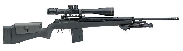 Springfield Armory M25 Tactical Rifle 7.62 NATO