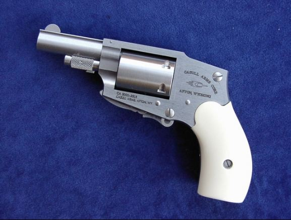 Casull CA-2000 revolver in .22 Lr caliber